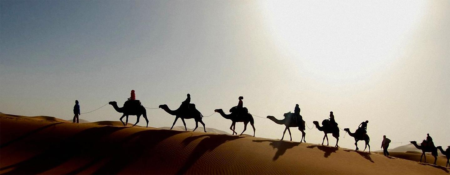 Méharée en Tunisie